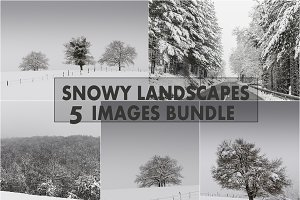 Winter photo bundle