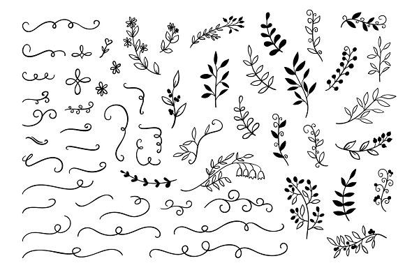 55 Hand Drawn Doodle Branches
