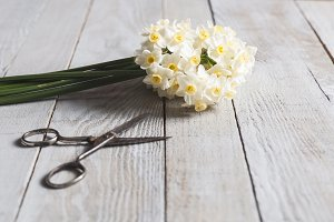 White narcissus flowers bouquet