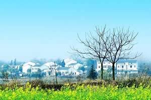 Chinese Village white houses