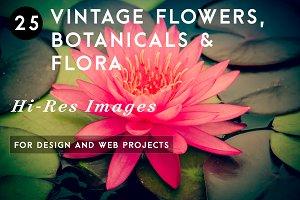 Vintage Flowers, Botanicals & Flora