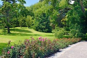 Bright landscape of summer park