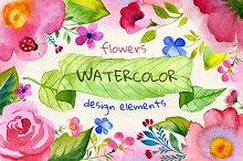Watercolor flowers + patterns