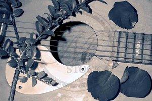 Sepia Guitar
