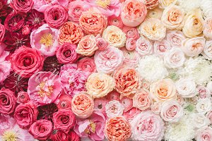 Styled Stock Photo, Ombre Flowers