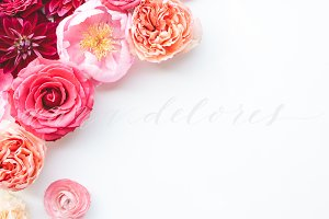 Styled Stock Flower Photo