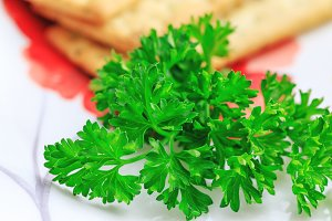 Fresh organic parsley in a plate