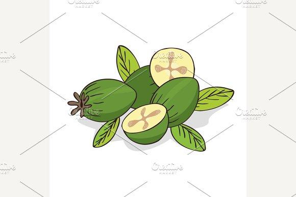 Isolate Ripe Guava Fruits Or Feijoa