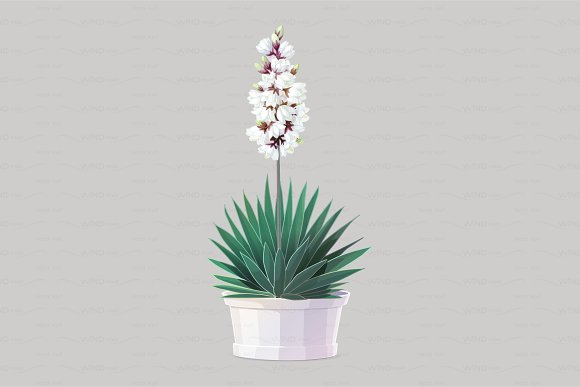 ♥ vector yucca tree in pot