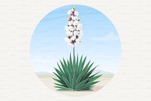 ♥ vector yucca tree in desert