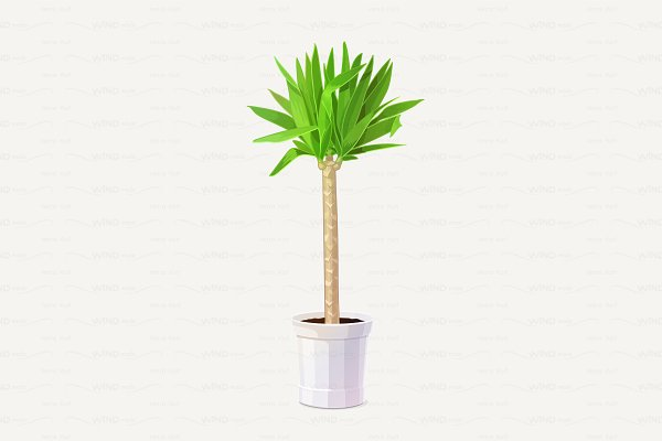 ♥ vector potted plant yucca