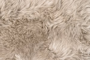 Natural sheepskin fur background