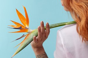 orange flower strelitzia in the hand of the girl