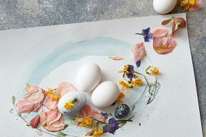 eggs on a paper