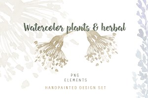 Watercolor plants & herbal elements.