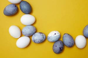 frame of colored eggs