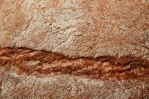 Background of bread texture
