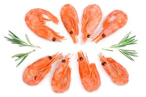 Red cooked prawn or shrimp with rosemary isolated on white background. Top view. Flat lay