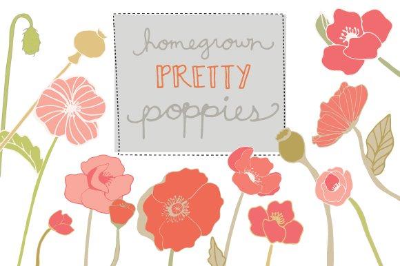 Poppies flower clip art vector illustrations creative market mightylinksfo