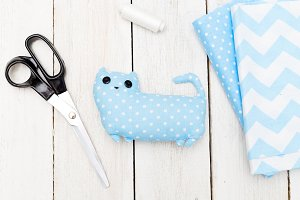 DIY for kids. Blue toy cat