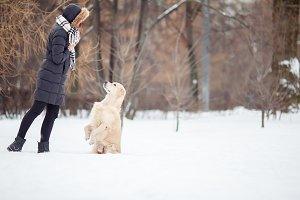 Picture of young woman in black jacket training dog in snowy park