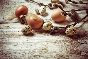 Chicken and quail eggs with  willow