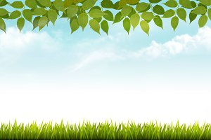 Nature spring background with grass