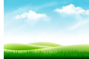 Nature summer background with grass