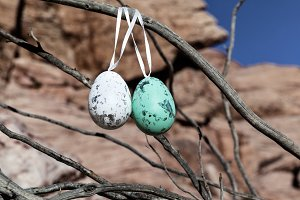 Decorative Easter Eggs On A Tree