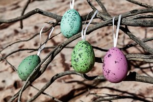 Colorful Easter Eggs Outdoors