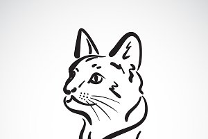 Vector of a cat head. Animal. Pet.