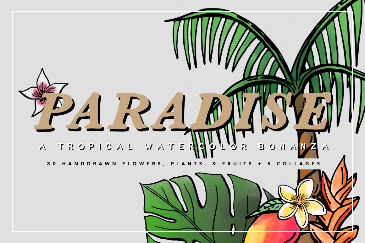 Tropical Watercolors Illustrations Illustrations Creative Market