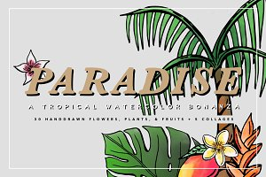 Tropical Watercolors & Illustrations
