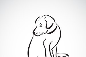 Vector of sitting dog(Labrador)