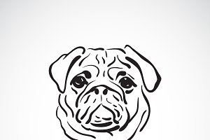 Vector of pug dog face. Pet.