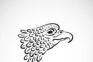Vector of an eagle head.Bird.Animal.