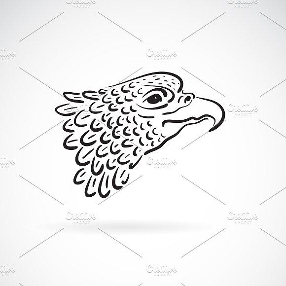 Vector Of An Eagle Head.Bird.Animal