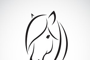 Vector of horse head design. Animal.