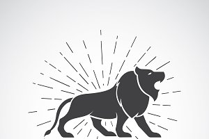 Vector of lion on white background.