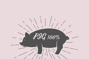 Vector of silhouette of pig. Animal.