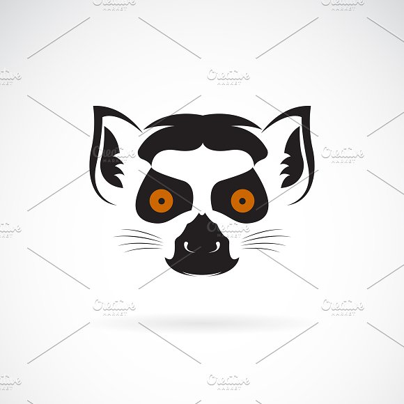 Vector of ring-tailed lemur head.