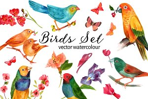 Vector Watercolour Birds Set