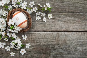 Easter eggs and spring blossom