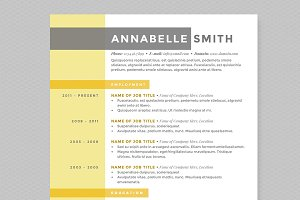 Criss Cross Resume Template Pkg.
