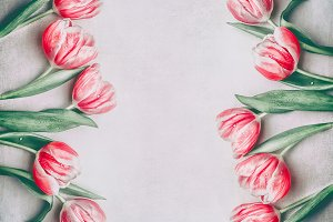 Red tulips frame with copy space