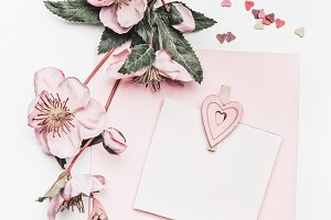 Pastel pink card mock up with flower