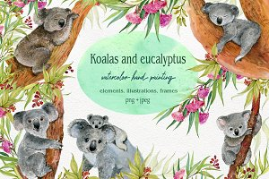 Koala & eucalyptus set illustration
