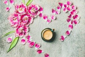 Spring morning concept