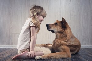 A wonderful little girl and a huge dog communicate with each other