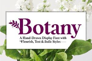 Botany Font Family - 50% Off